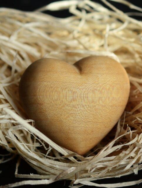 wood wool, wood, natural materials